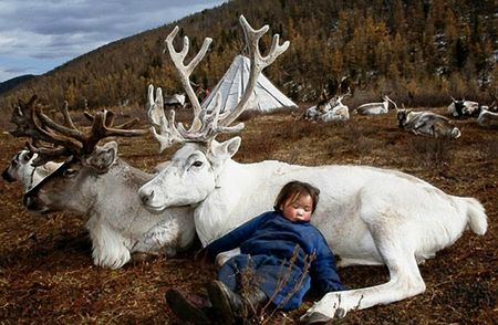enfant mongol