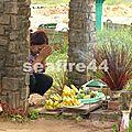 393_montèe au parc national de Bokor