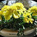 Carnet textile ...les marigolds d'avril ...