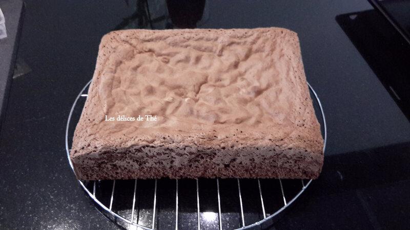Terrain de Foot mousse chocolat 21 10 17 (1)