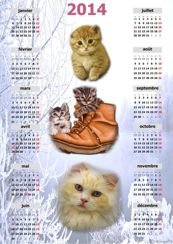 calendrier chat