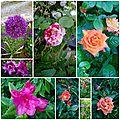 mai 2015 jardin