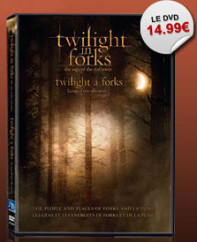 Twilight_in_Forks
