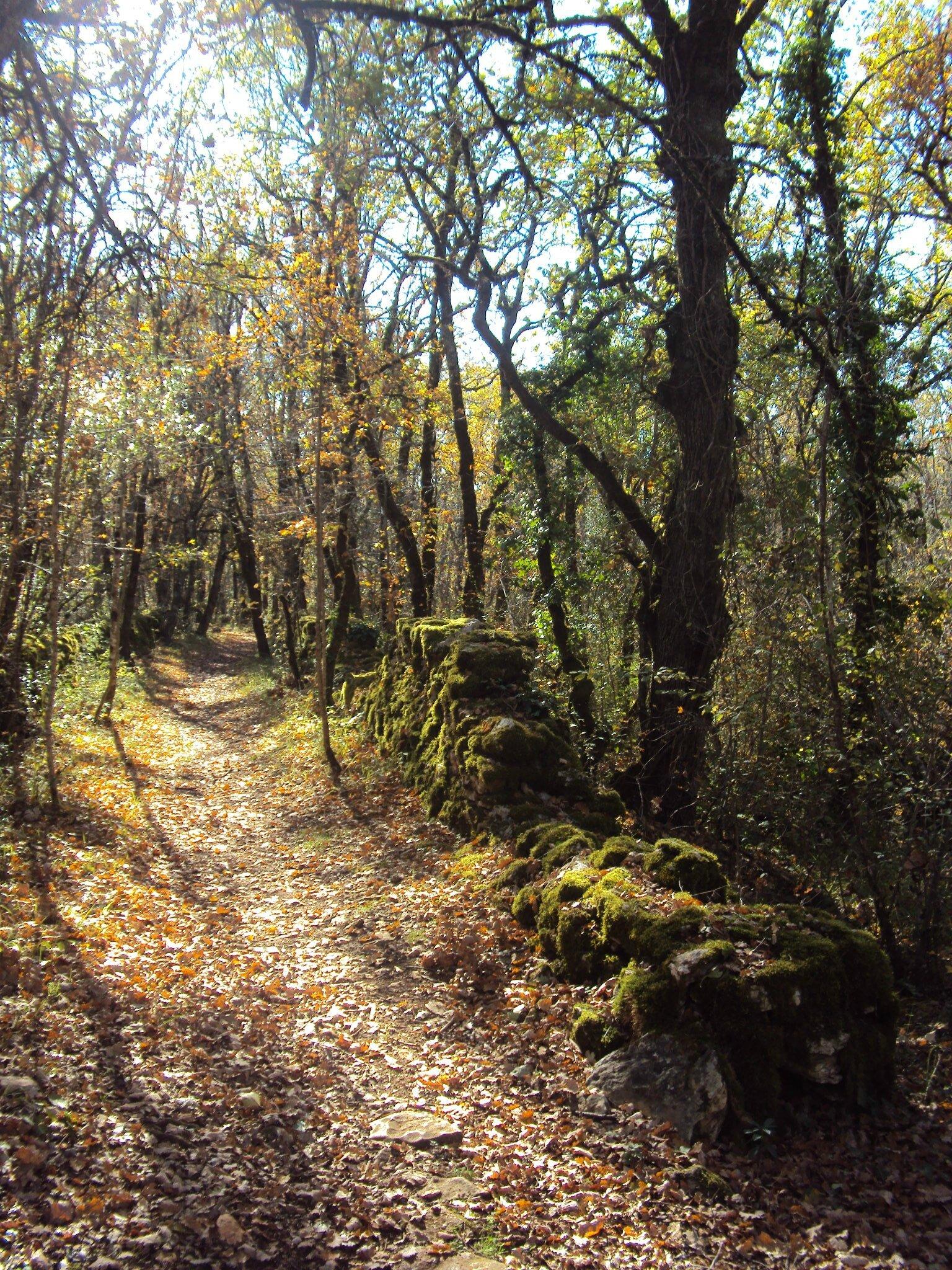 week-end randonnée à saint-antonin-noble-val (tarn-et-garonne