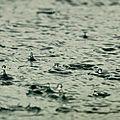 Jules supervielle - la goutte de pluie