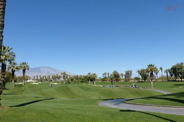 GOLF PALM DESERT 3