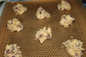 risotto et cookies 031