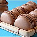 Macarons au chocolat au lait et noisettes
