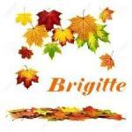 automne3bc