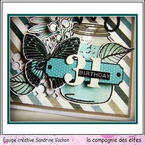 Sandrine VACHON dt LCDE (2)