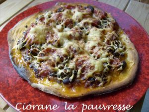 pizza_mexicaine