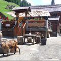 Evasion en suisse