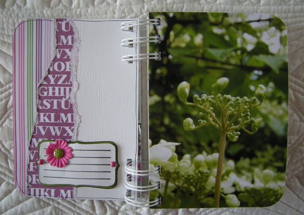 Les_fleurs_de_Valloires__12_