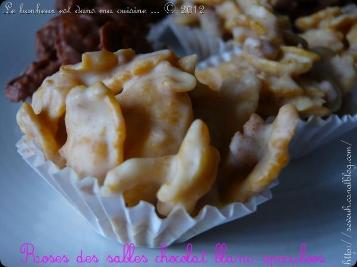 Rose des sables choco blc speculoos