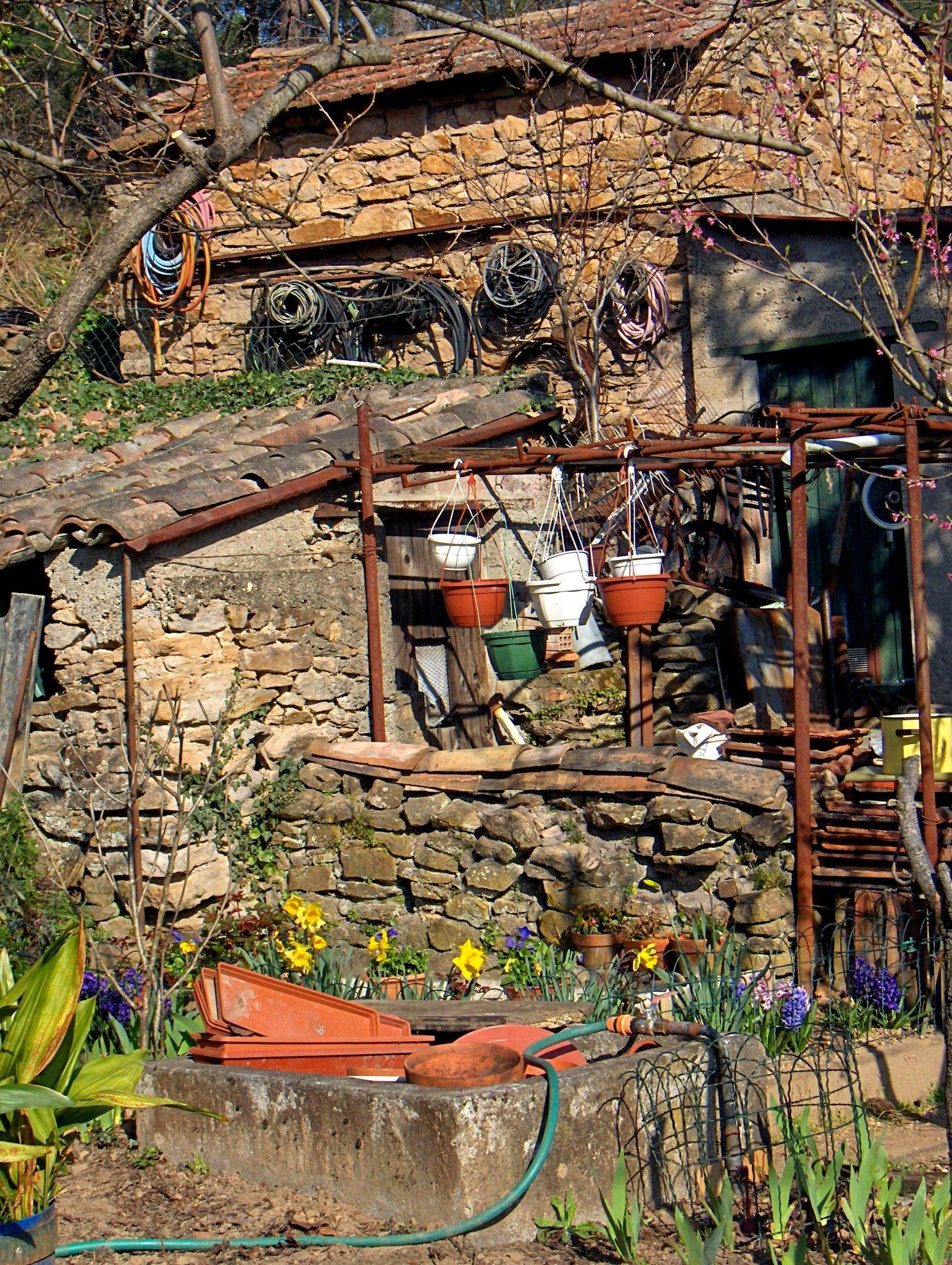 cabane aux jonquilles
