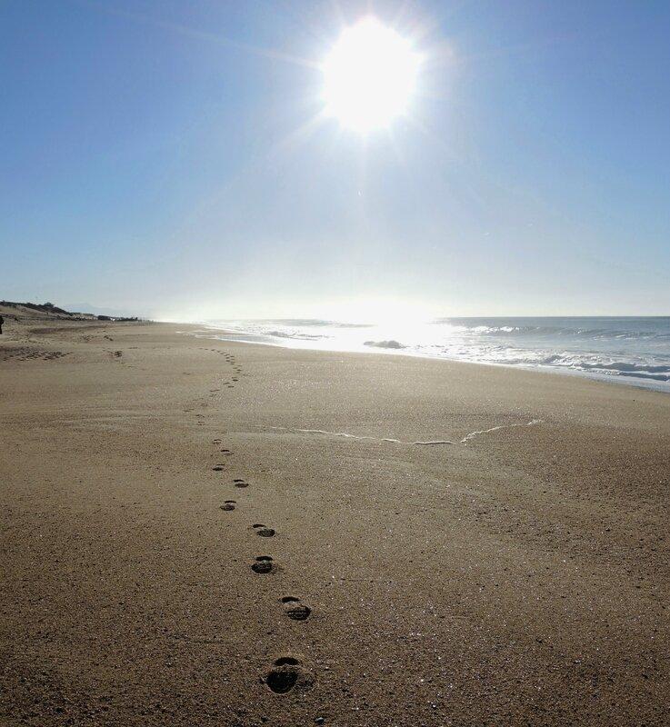 Labenne-Océan, plage et pas en hiver (40)