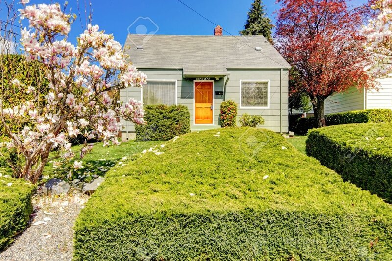 18174492_Petite_maison_verte_ext_rieure_avec_des_arbres_de_printemps_magnolia_en_fleurs_Am_ricaine_maison_con_Banque_d_images