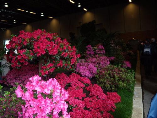 Floralies 064