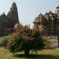 Temples et fleurs