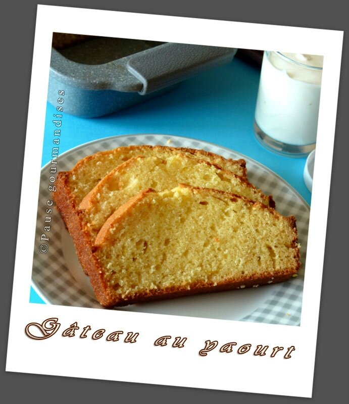 Cake Nature Thermomix Sans Beurre