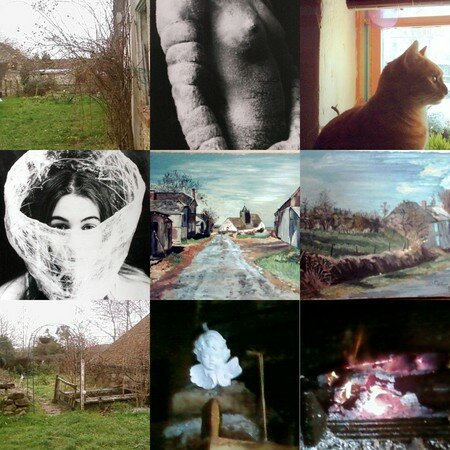 collage11