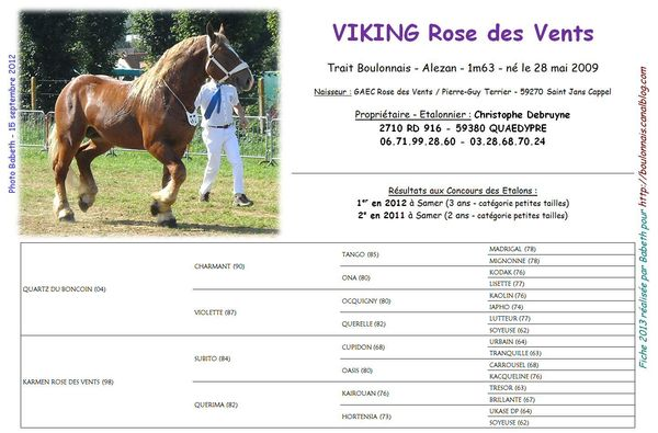 Viking_Rose_des_Vents