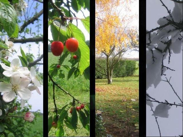 4 saisons au jardin au bout du monde for Au bout du jardin