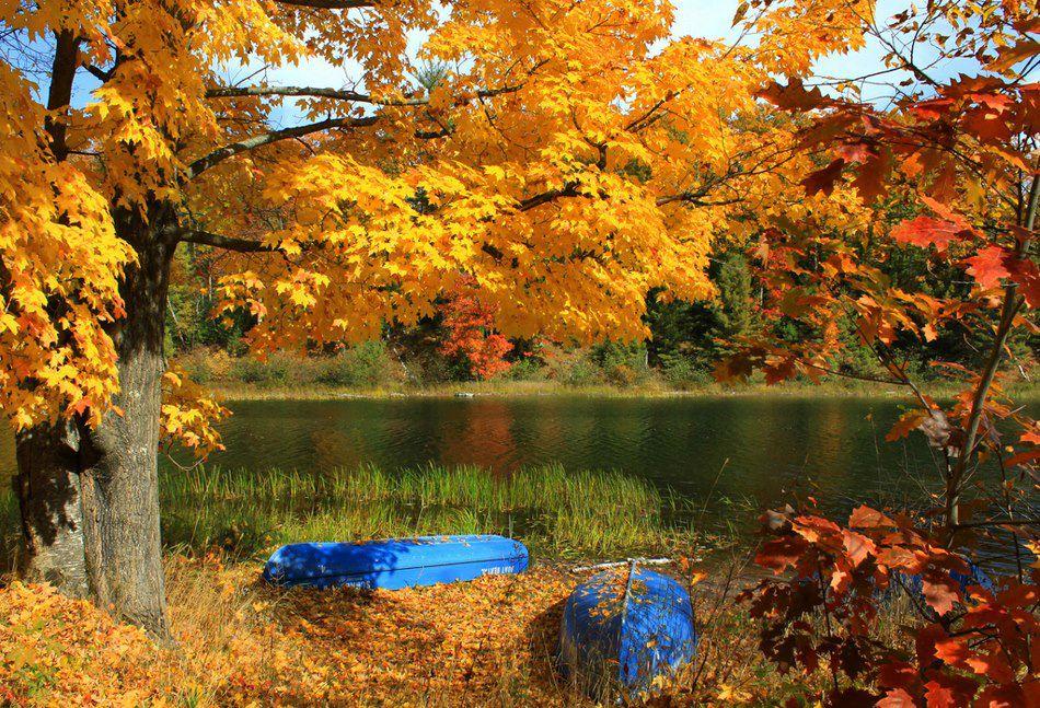 automne lac209132342_n