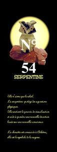 DI11_CHOUETTE_S54