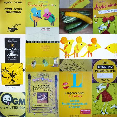 jaune_copie