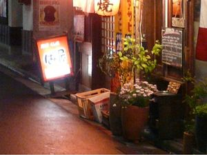 Canalblog_Rues_Plantes21_Shibuya_Love_H_tels_Ruelle_D_tail01