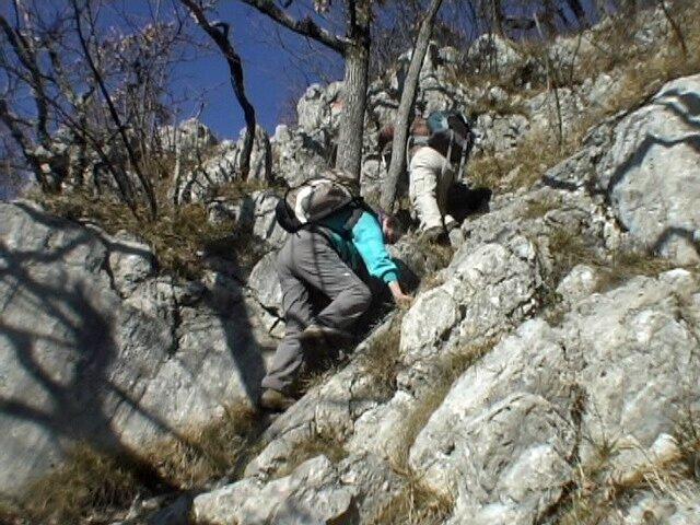 dans la roche