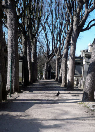pere_lachaise_corbeau