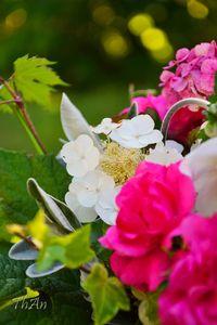 04_bouquet_11_07_01_003