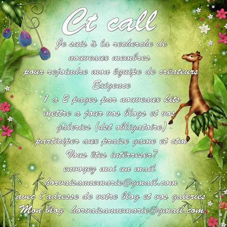 ct_cal13