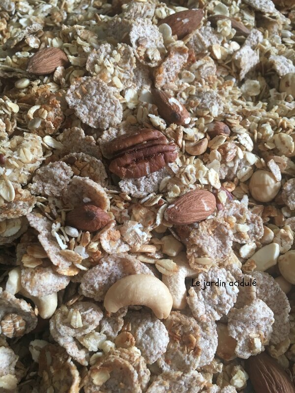 Granola homemade 3