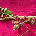 Hazel twisted wand 1