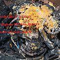 Attraper les voleurs et autres malfaiteurs grâce au chef vaudou agbon