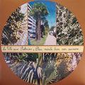 la ville aux palmiers