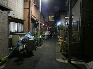 Canalblog_Rues_Plantes11_Ikebukuro