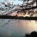 soleil couchant sur l'etang_05