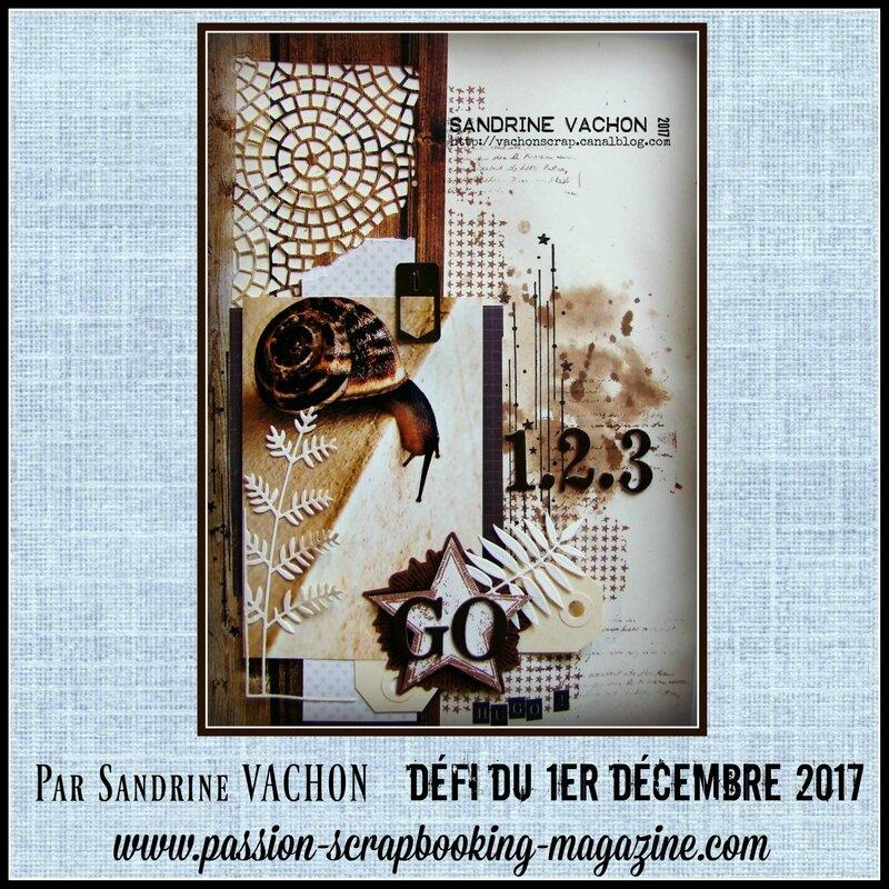 Sandrine VACHON défi 1er déc BLOG PS (1)