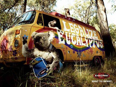 eastpak_koala_2004