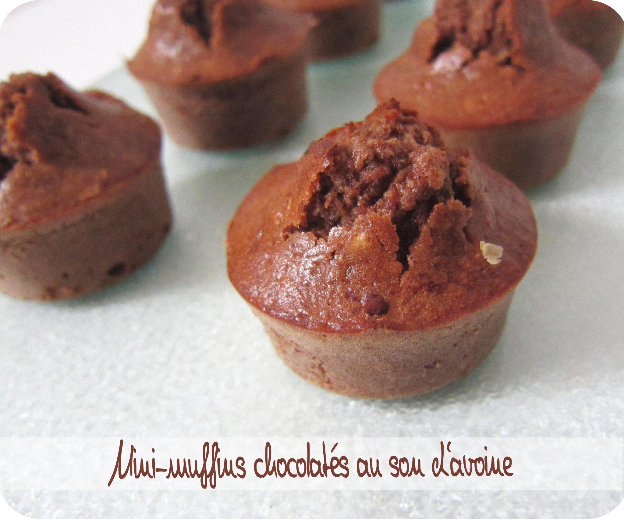 Recette gateau au chocolat au son d'avoine