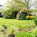 jardin printemps 2009 013