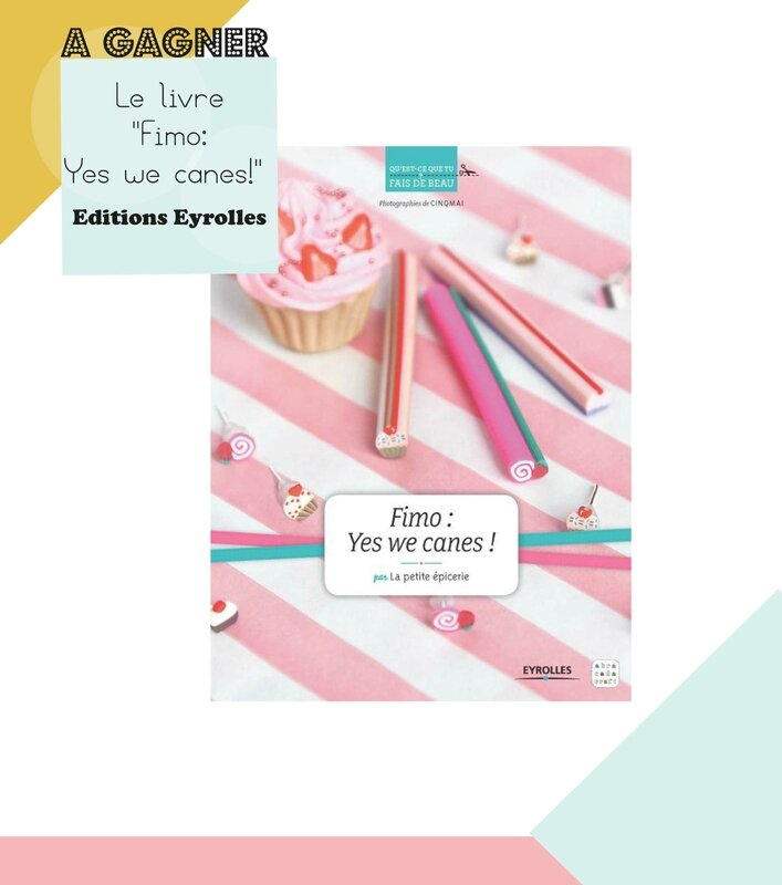 livre-fimo-yes-we-canes