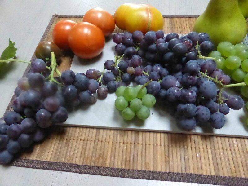 18-raisins tomates (6)