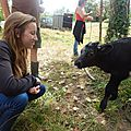 Visite a la ferme