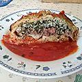 Paquets de chou et tomates farcis à la provençale