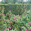 Petit tour au jardin !!!